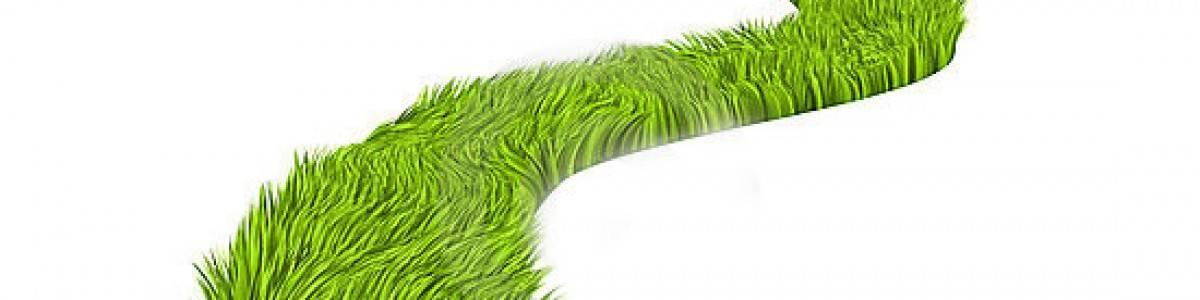 Economía verde para un desarrollo que merece la pena
