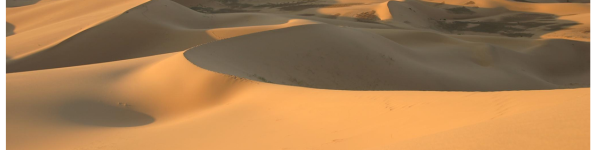 La Gran Muralla Verde China: Freno al avance del desierto de Gobi