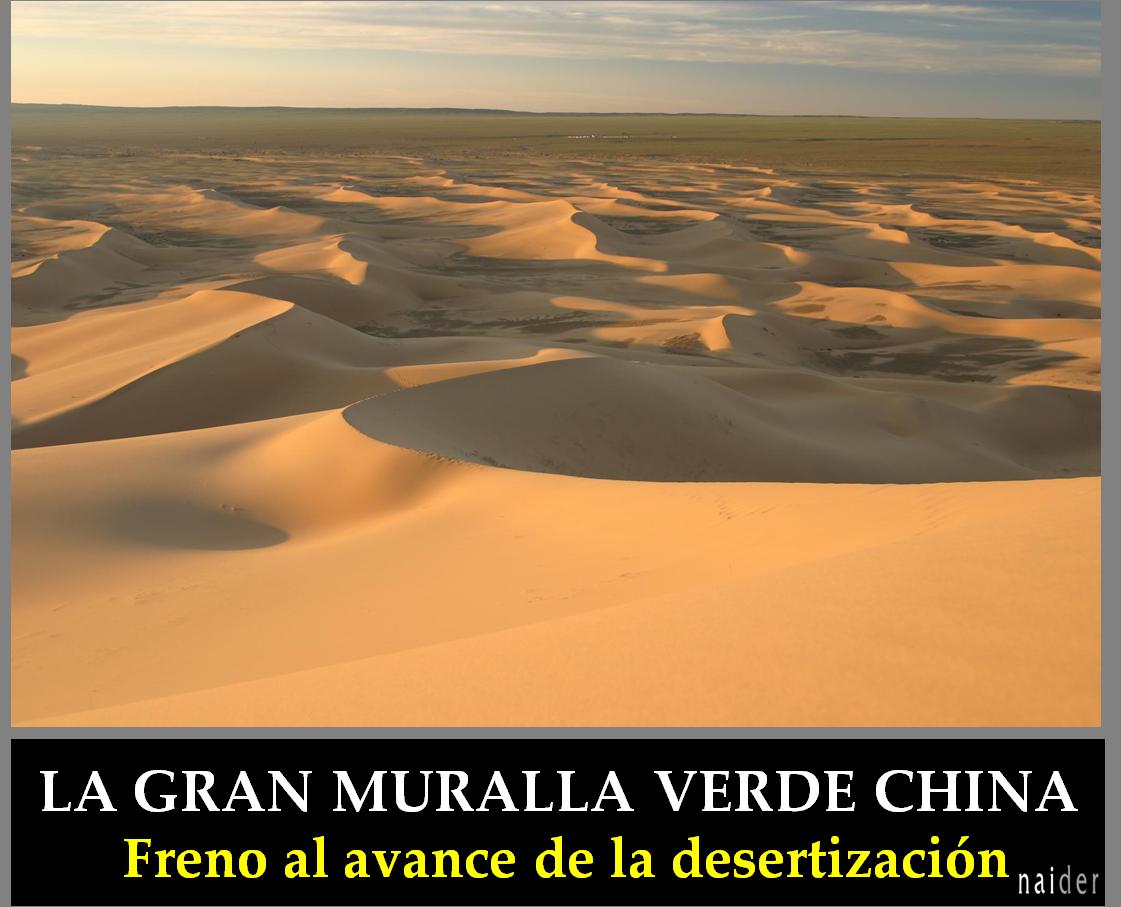 Gobi desierto