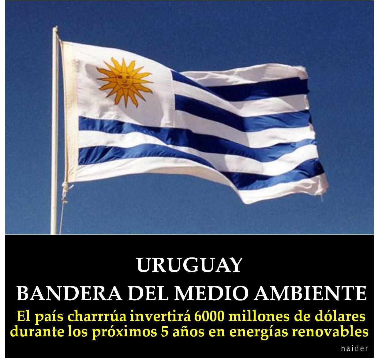 Uruguay bandera del medio ambiente buena