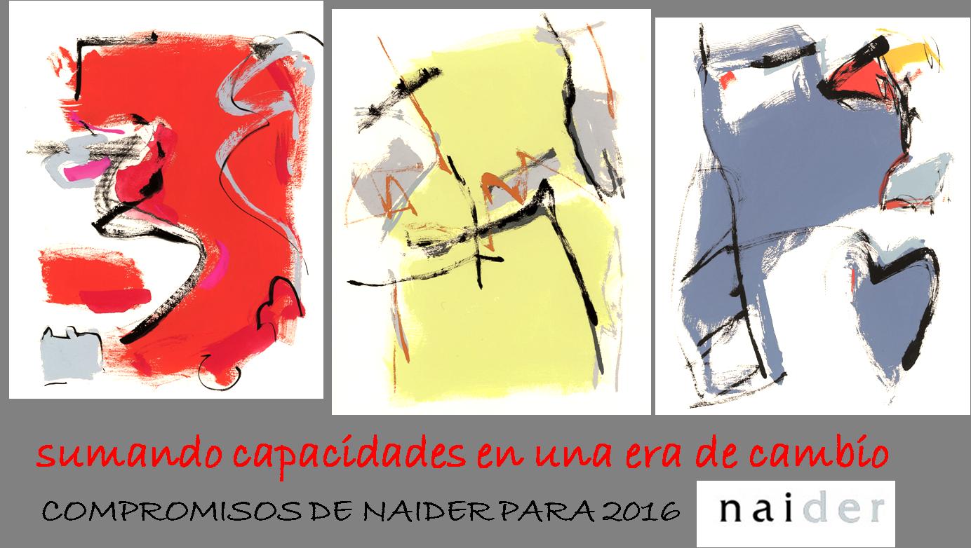 Compromisos Naider 2016