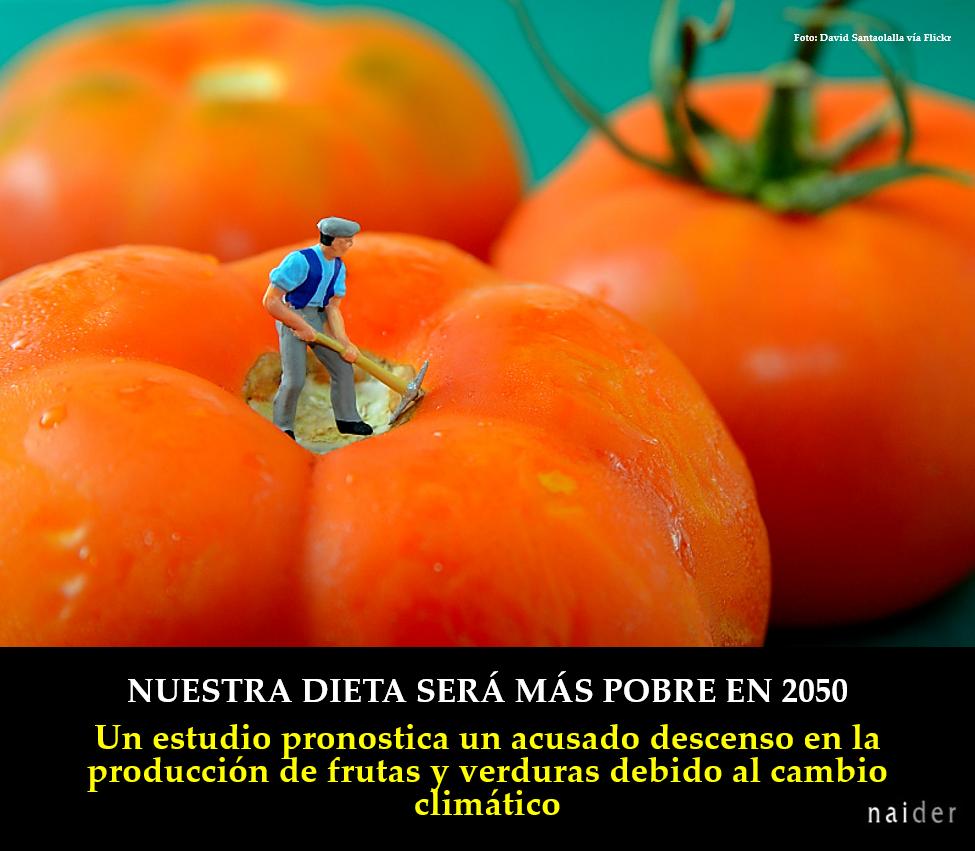 Nuestra dieta en 2050 fotopost.jpg