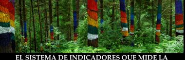 El sistema de indicadores que mide la sostenibilidad local