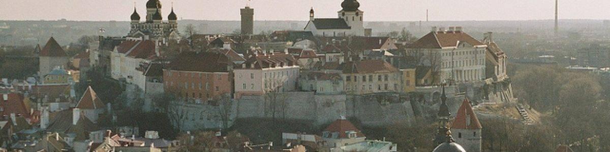 Estonia planea la primera divisa digital nacional