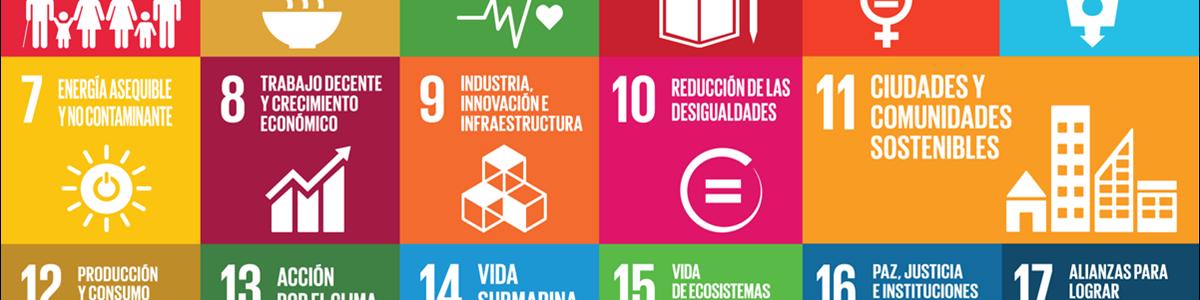 Empresas y sostenibilidad