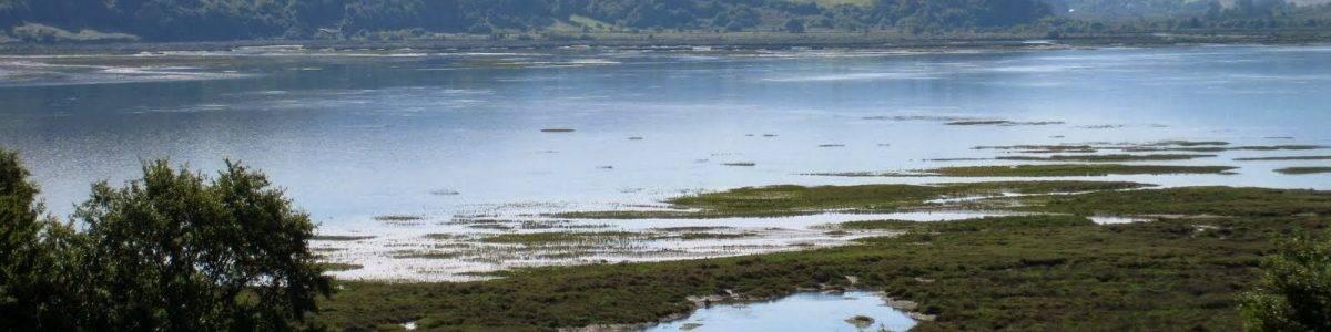 Informe Medio Ambiente Euskadi 2019