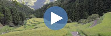 Vídeo: Kamikatsu, el pueblo cero residuos