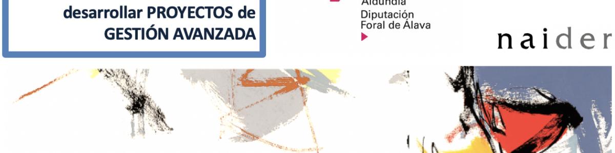 Ayudas Innobideak-Kudeabide para desarrollar proyectos de gestión avanzada en Álava