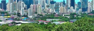 Ciudades del Futuro: Resiliencia y Sostenibilidad