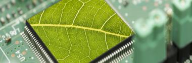 Eco-etiquetado y sistemas de gestión ambiental en las empresas vascas